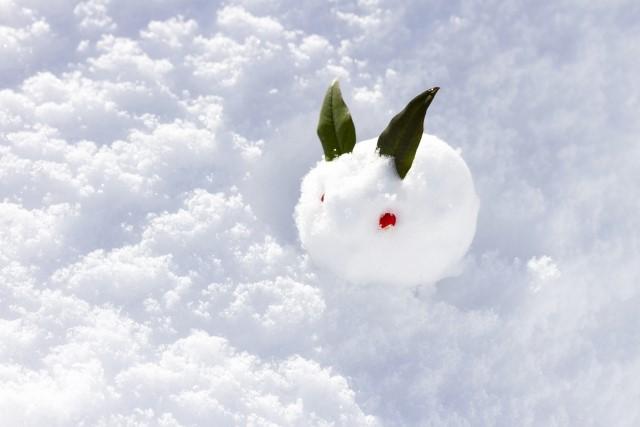 冬・ウサギ